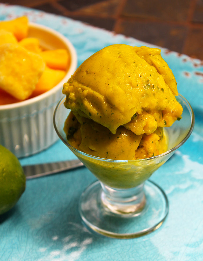 Vitamix Mango Mint Lime Sorbet - The Lean Clean Eating Machine