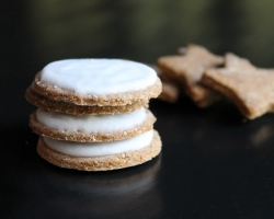 Cinnamon Crunch Cookies with Sugar-Free Vegan Icing